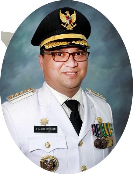 <h4>Dr. H. Erzaldi Rosman, S.E., M.M.<br/>Gubernur Bangka Belitung</h4>